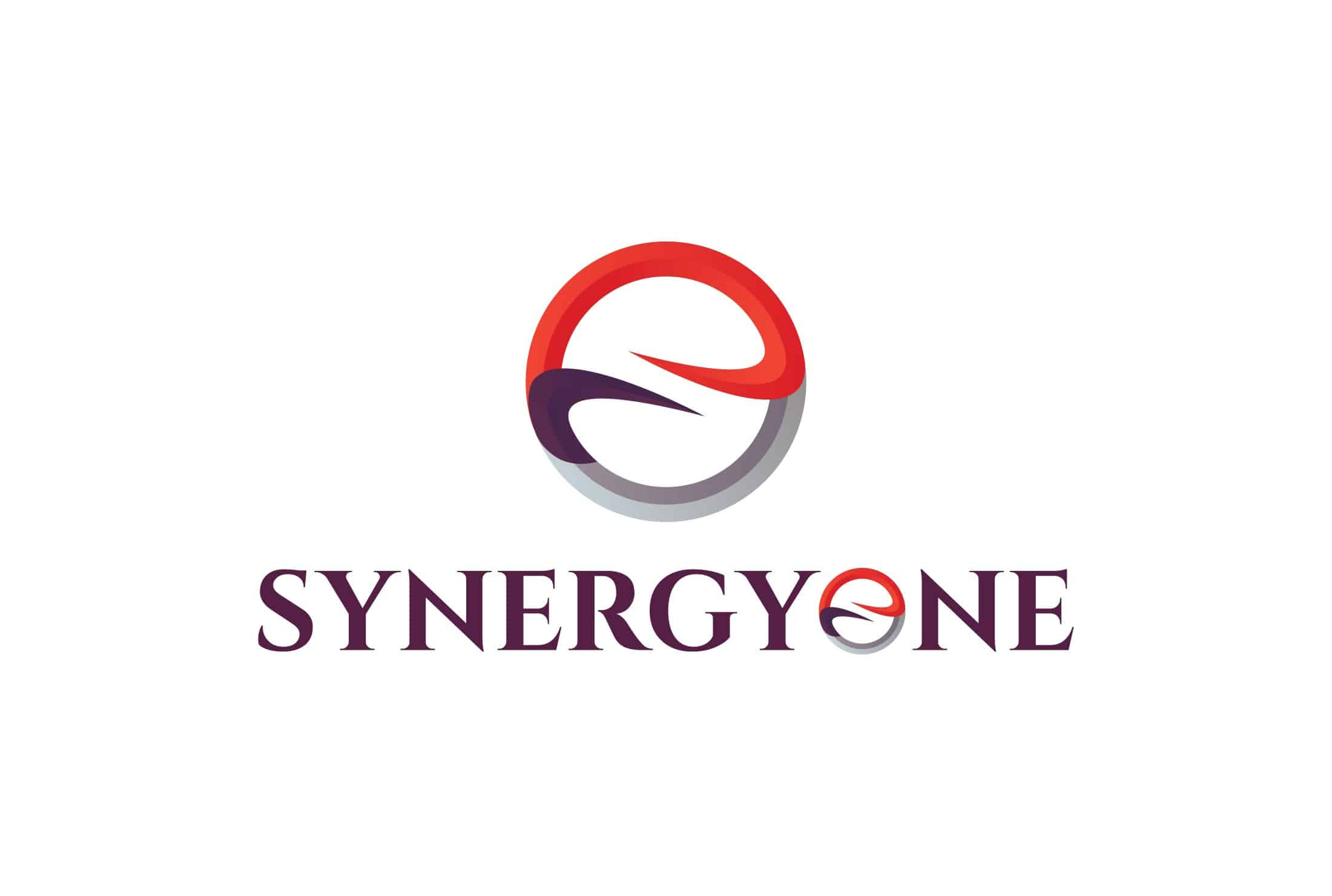 Home+-+SynergyOne+Consulting+Corporation